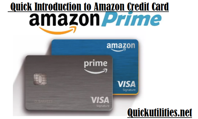 Amazon Credit Card: What Is It and How to Apply For It?