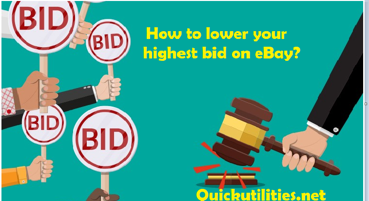 How to Lower Max Bid on eBay? Retract Highest Bid on eBay